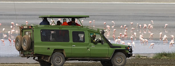 4x4 Car Rental Fleet In Uganda Rwanda Kenya Tanzania