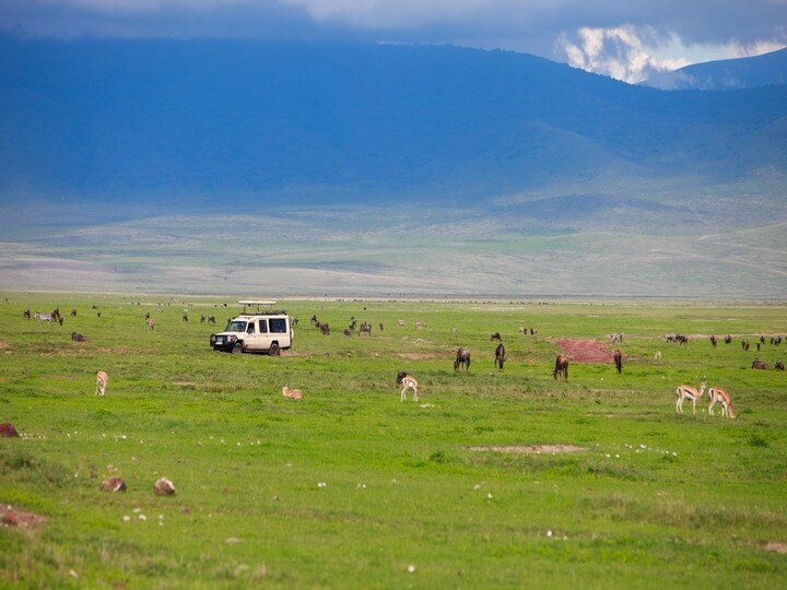 Ngorongoro Crater - Tanzania safari
