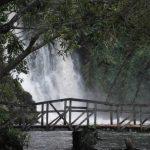 Landscape View of Ssezibwa Falls