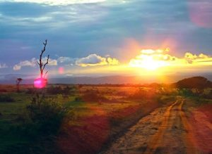 Sun-set-Murchison-Falls-National-Park