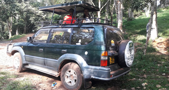 Land Cruiser Hardtop Safari Vehicle