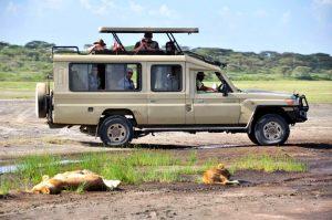 Safari Land cruiser - 7 Seater, Extended